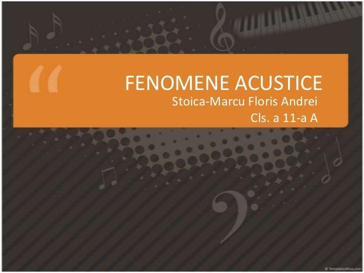 FENOMENE ACUSTICE    Stoica-Marcu Floris Andrei                 Cls. a 11-a A