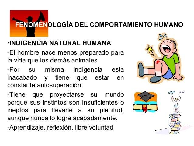 FENOMENOLOGÍA DEL COMPORTAMIENTO HUMANO •INDIGENCIA NATURAL HUMANA -El hombre nace menos preparado para la vida que los de...