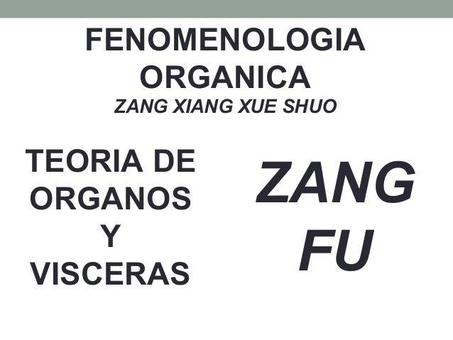FENOMENOLOGIA ORGANICA ZANG XIANG XUE SHUO TEORIA DE ORGANOS Y VISCERAS ZANG FU