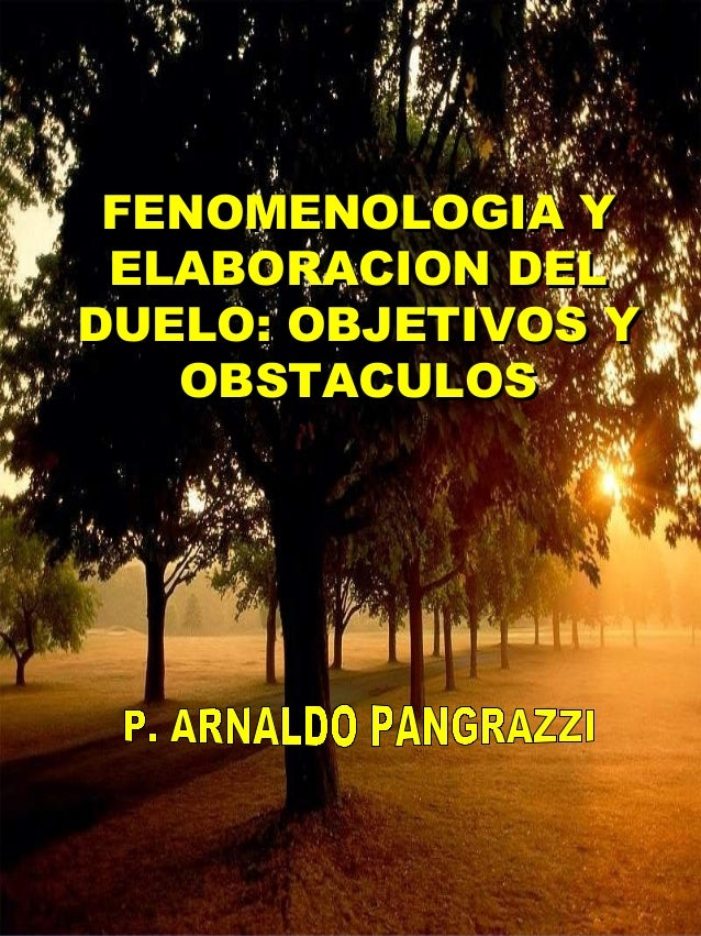 FENOMENOLOGIA Y ELABORACION DELDUELO: OBJETIVOS Y   OBSTACULOS