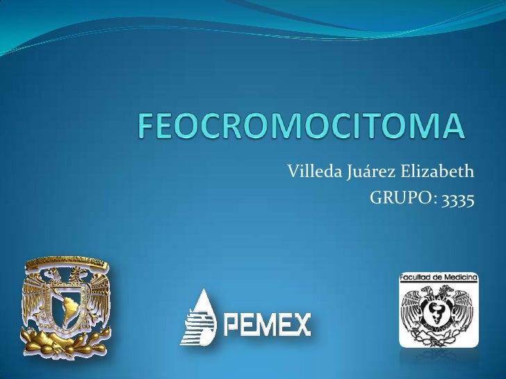 FEOCROMOCITOMA<br />Villeda Juárez Elizabeth<br />GRUPO: 3335<br />