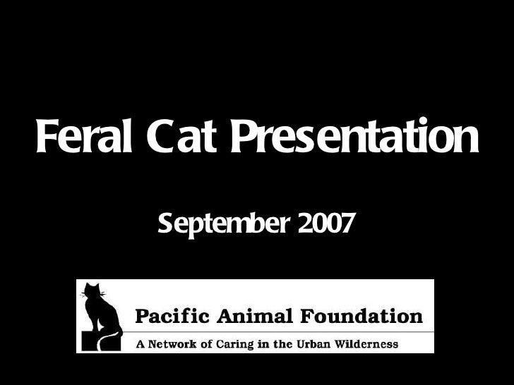 Feral Cat Presentation September 2007