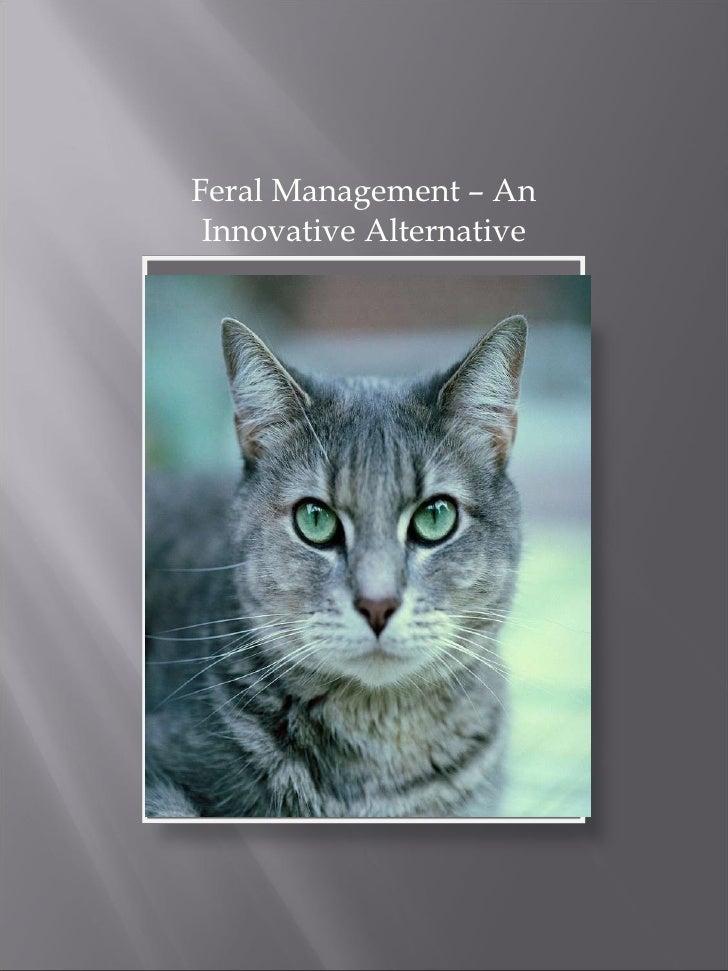 <ul><li>Feral Management – An Innovative Alternative </li></ul>