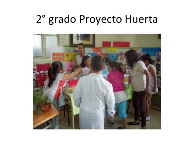 2° grado Proyecto Huerta