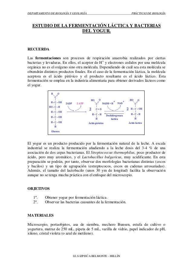 DEPARTAMENTO DE BIOLOGÍA Y GEOLOGÍA                                PRÁCTICAS DE BIOLOGÍA   ESTUDIO DE LA FERMENTACIÓN LÁCT...