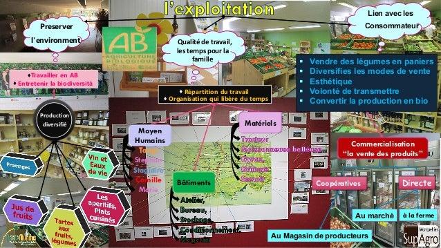 Directe Au marché à la ferme Travailler en AB  Entretenir la biodiversità Production diversifié Preserver l'environment ...