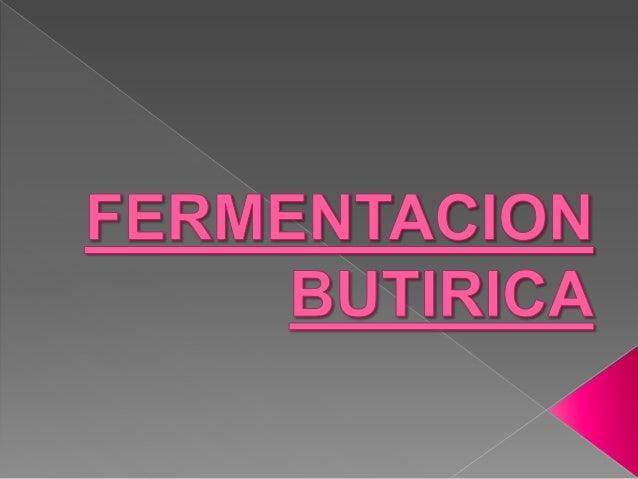 Fermentacion Butirica Download