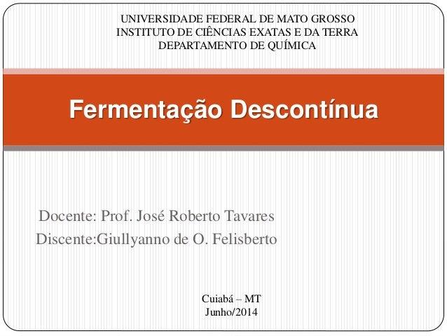 Docente: Prof. José Roberto Tavares Discente:Giullyanno de O. Felisberto Fermentação Descontínua UNIVERSIDADE FEDERAL DE M...