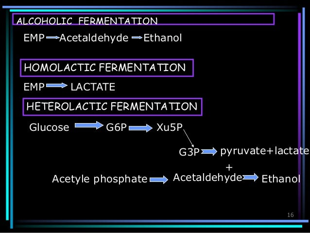 carbohydrate fermentation essay Carbohydrate fermentation testing essay sample published by admin on november 17, 2017 a what is agitation it is a metabolic procedure that allows the production .