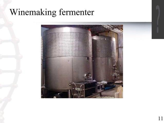 11  Winemaking fermenter