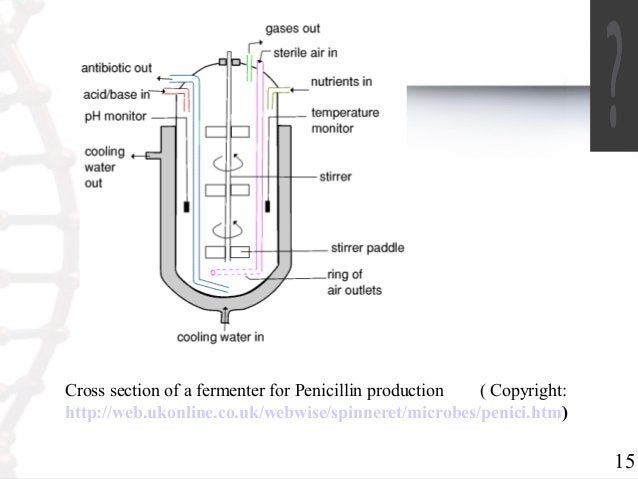 15  Cross section of a fermenter for Penicillin production ( Copyright:  http://web.ukonline.co.uk/webwise/spinneret/micro...