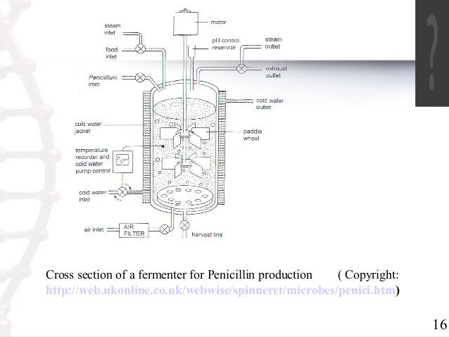 16  Cross section of a fermenter for Penicillin production ( Copyright:  http://web.ukonline.co.uk/webwise/spinneret/micro...