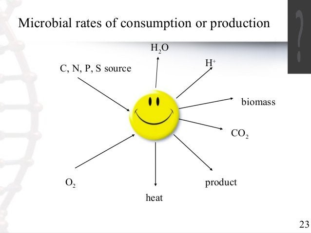 23  Microbial rates of consumption or production  C, N, P, S source  H2O  H+  O2  heat  CO2  product  biomass