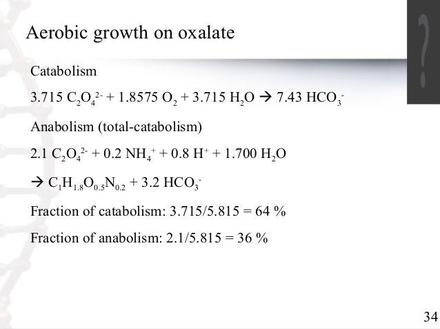 34  Aerobic growth on oxalate  Catabolism  3.715 C2O4  2- + 1.8575 O2 + 3.715 H2O  7.43 HCO3  -  Anabolism (total-catabol...