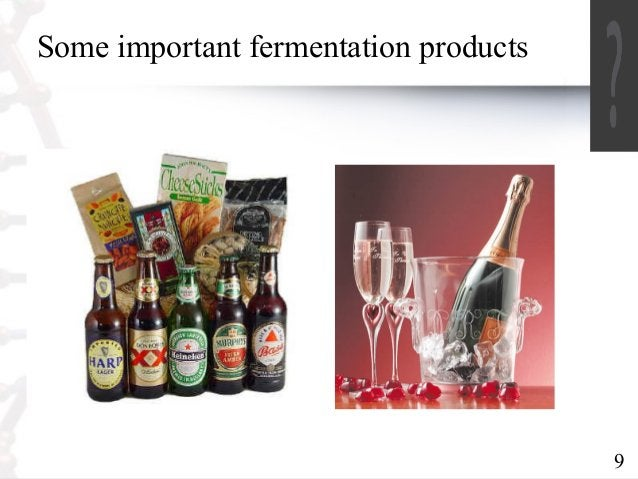 9  Some important fermentation products