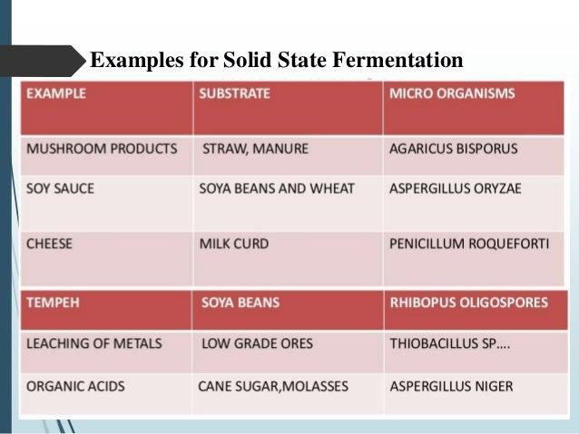 submerged fermentation definition