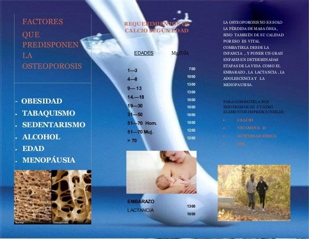 Tr ptico alimentaci n para la osteoporosis - Alimentos para la osteoporosis ...