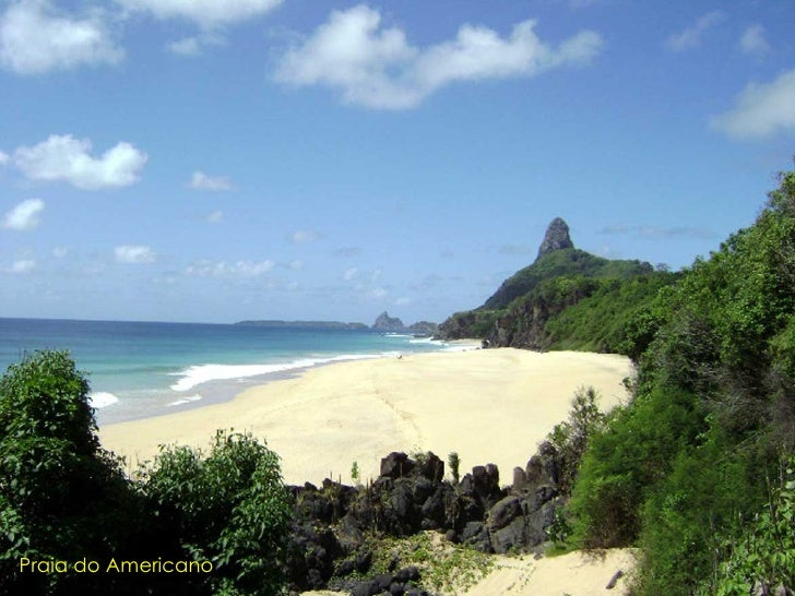 Praia do Sueste, local é uma espécie de self-service das tartarugas