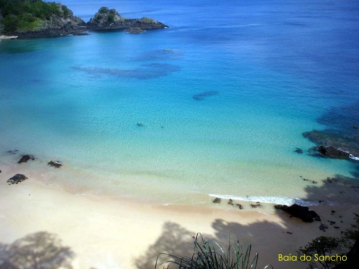Praia do Leão, local de desova das tartarugas