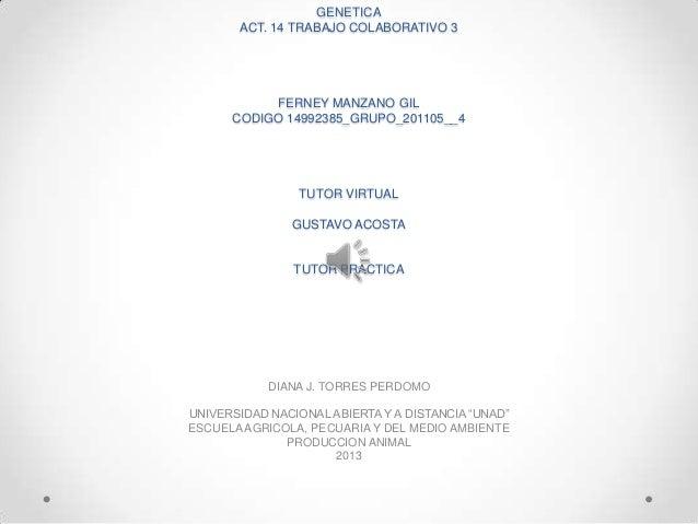 GENETICAACT. 14 TRABAJO COLABORATIVO 3FERNEY MANZANO GILCODIGO 14992385_GRUPO_201105__4TUTOR VIRTUALGUSTAVO ACOSTATUTOR PR...