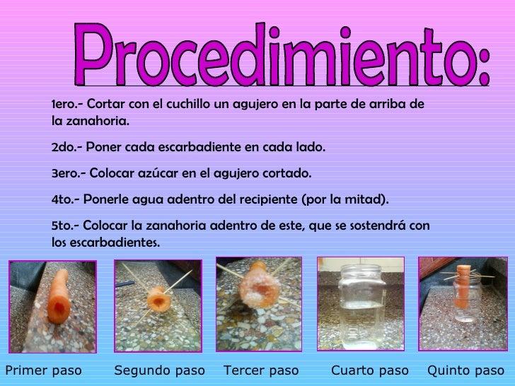 osmosis experiment plan