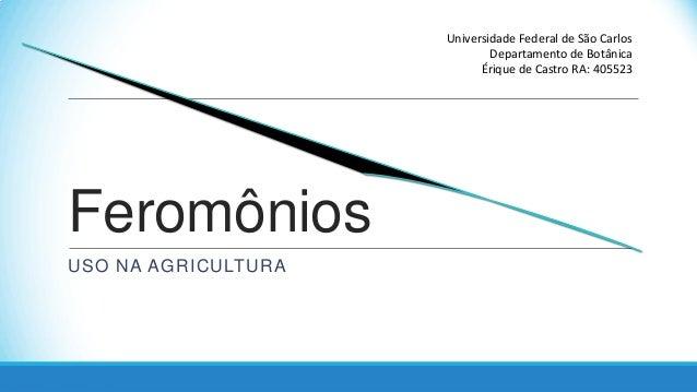 Universidade Federal de São Carlos Departamento de Botânica Érique de Castro RA: 405523  Feromônios USO NA AGRICULTURA