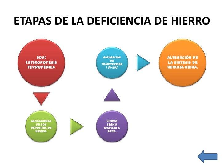 ETAPAS DE LA DEFICIENCIA DE HIERRO                Frotis de                    Disminución     Saturación de 3ra: anemia  ...