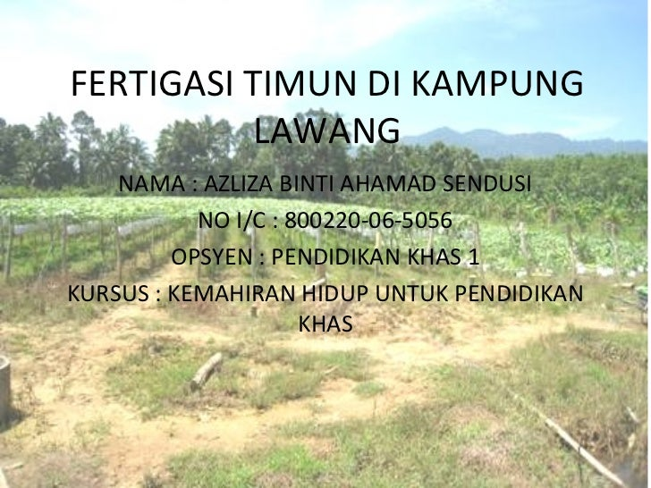 FERTIGASI TIMUN DI KAMPUNG          LAWANG    NAMA : AZLIZA BINTI AHAMAD SENDUSI           NO I/C : 800220-06-5056        ...