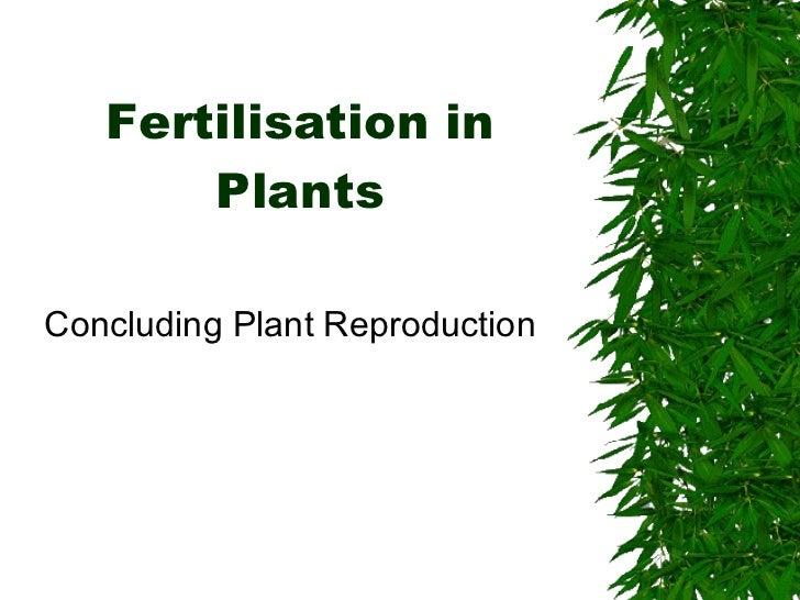 Fertilisation in Plants Concluding Plant Reproduction