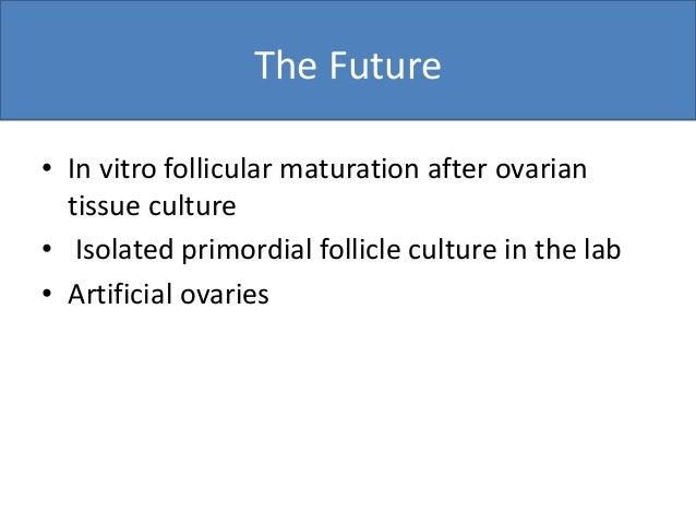 Fertility Preservation 3