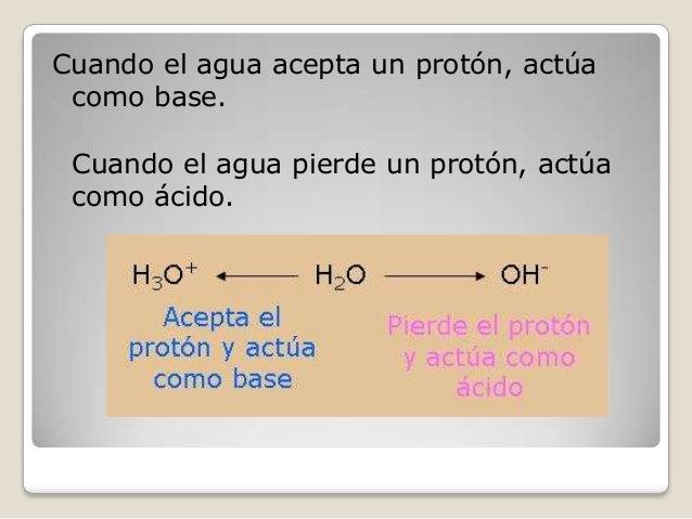 Cuando el agua acepta un protón, actúa como base. Cuando el agua pierde un protón, actúa como ácido.