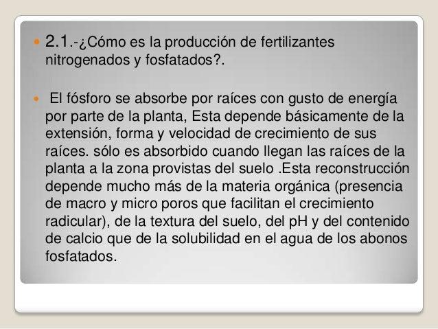   2.1.-¿Cómo es la producción de fertilizantes nitrogenados y fosfatados?.    El fósforo se absorbe por raíces con gusto...