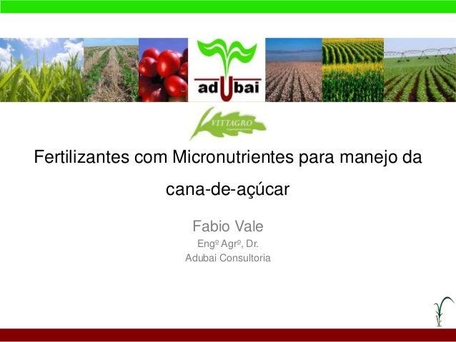 Fertilizantes com Micronutrientes para manejo da cana-de-açúcar Fabio Vale Engo Agro, Dr. Adubai Consultoria