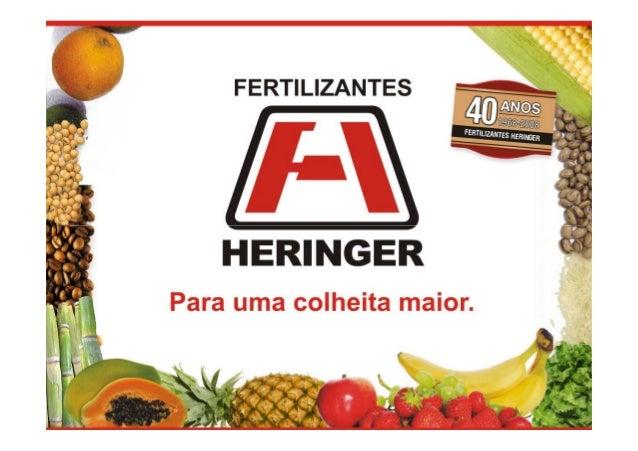 Produtividade Agrícola e  Consumo de Fertilizantes  A produtividade agrícola no Brasil tem crescido mais rapidamente do qu...