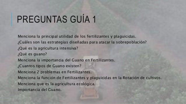 Fertilizantes y plaguicidas for Rotacion cultivos agricultura ecologica