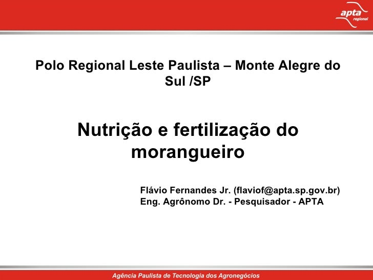 Polo Regional Leste Paulista – Monte Alegre do Sul /SP Nutrição e fertilização do morangueiro Flávio Fernandes Jr. (flavio...