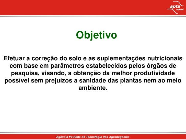 Fertilização do morangueiro Slide 3