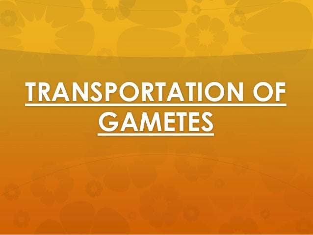 TRANSPORTATION OF     GAMETES