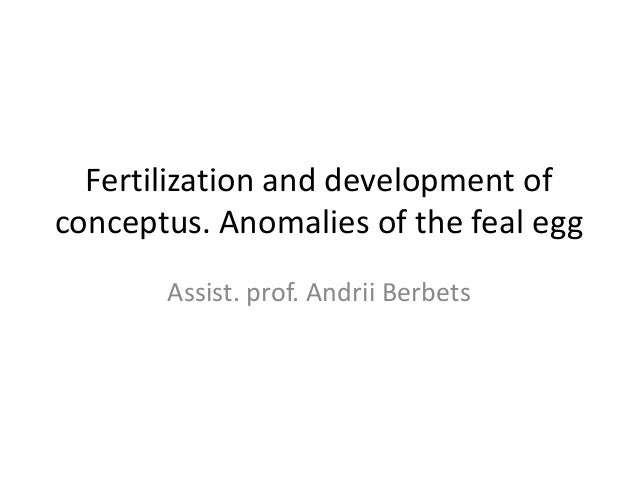 Fertilization and development of conceptus. Anomalies of the feal egg Assist. prof. Andrii Berbets