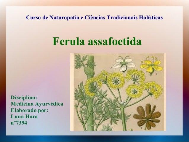 Curso de Naturopatia e Ciências Tradicionais Holísticas Disciplina: Medicina Ayurvédica Elaborado por: Luna Hora nº7394 Fe...
