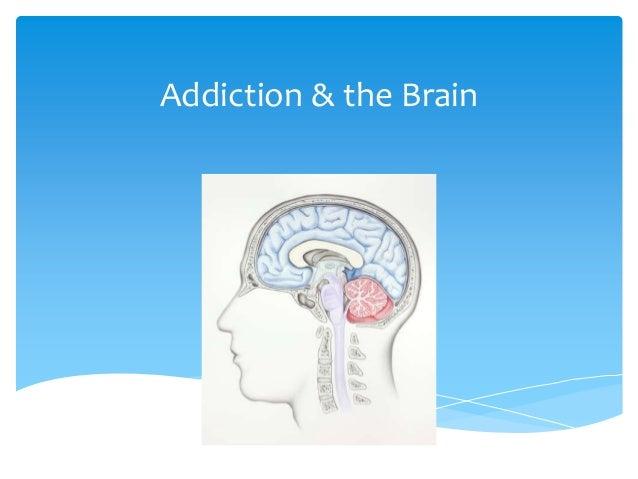 Addiction & the Brain