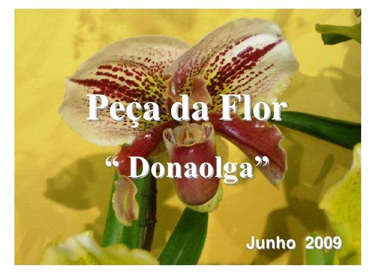 """Peça da Flor<br />"""" Donaolga""""<br />Junho  2009<br />"""