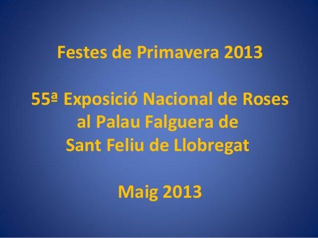 Festes de Primavera 201355ª Exposició Nacional de Rosesal Palau Falguera deSant Feliu de LlobregatMaig 2013