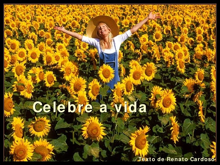 Texto de Renato Cardoso Celebre a vida