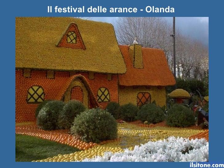 Il festival delle arance - Olanda