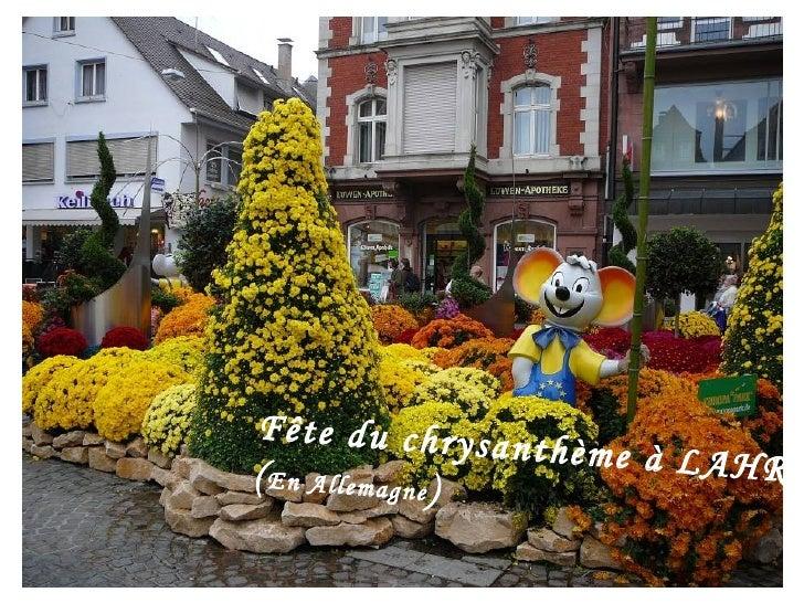Fête du chrysanthème à LAHR ( En Allemagne )