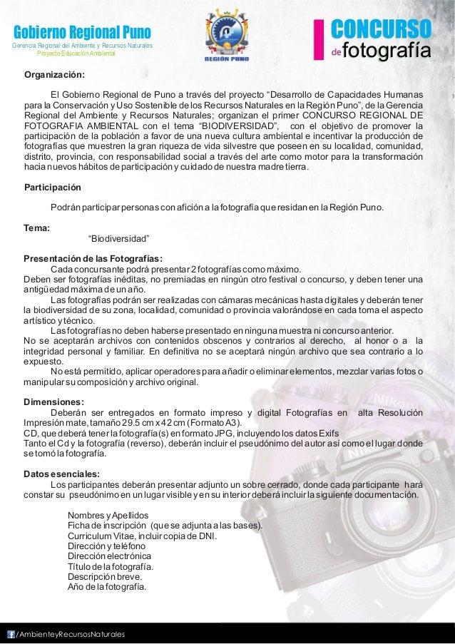 Gobierno Regional PunoGerencia Regional del Ambiente y Recursos Naturales         Proyecto Educación Ambiental    Organiza...