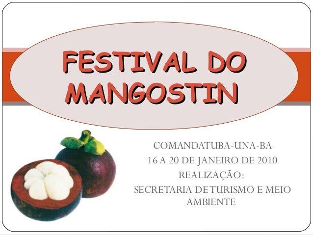 FESTIVAL DOFESTIVAL DO MANGOSTINMANGOSTIN COMANDATUBA-UNA-BA 16 A 20 DE JANEIRO DE 2010 REALIZAÇÃO: SECRETARIA DETURISMO E...