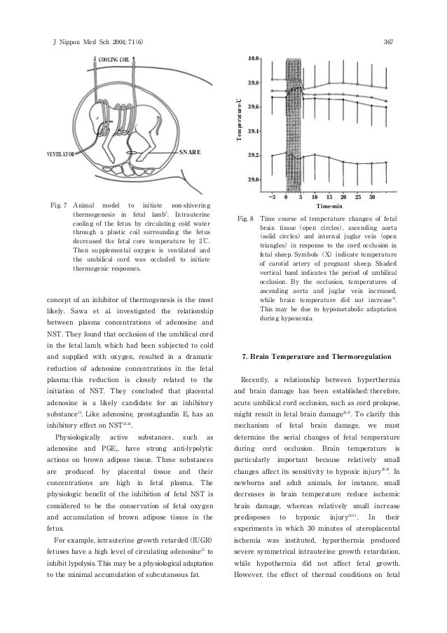 view LinkNumerical Methods for Nonsmooth