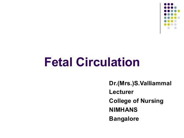 Fetal Circulation           Dr.(Mrs.)S.Valliammal           Lecturer           College of Nursing           NIMHANS       ...